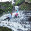 マングローブカヤック&ジャングル探検1日ツアー